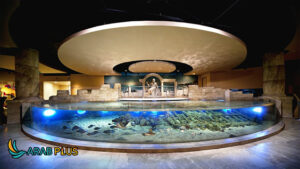 Istanbul Aquarium - اسطنبول
